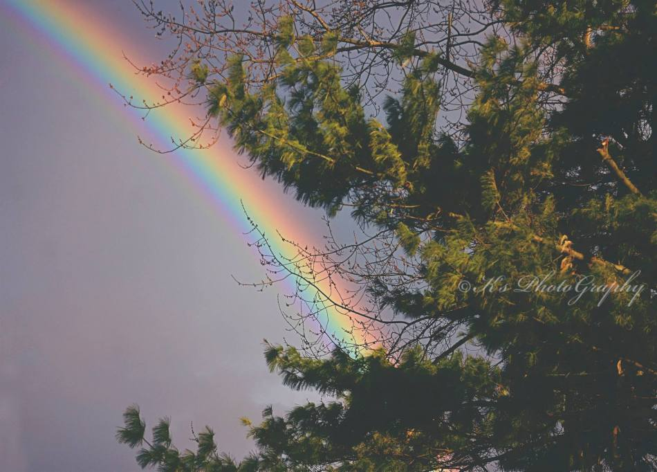 A reminder of God's miracles and beautiful things <3