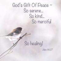 God's Peace Gift